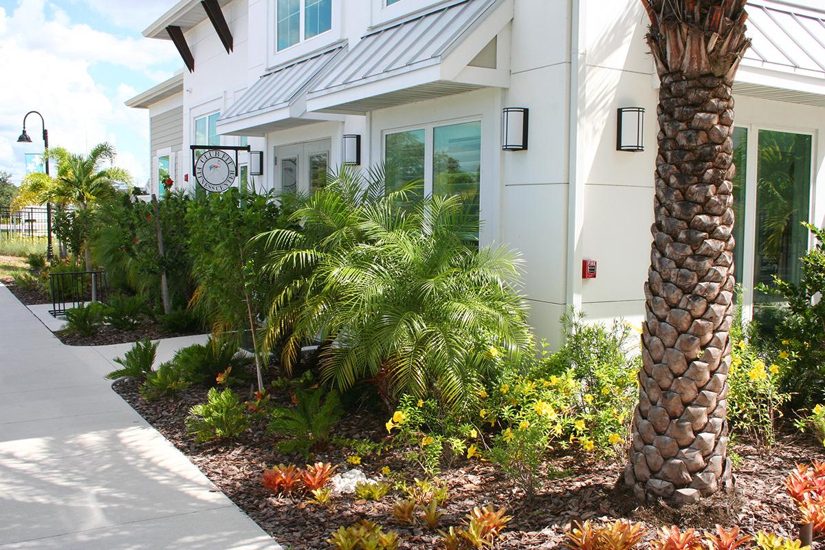 Floridian6